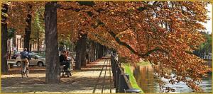 Vía ciclista en Estrasburgo