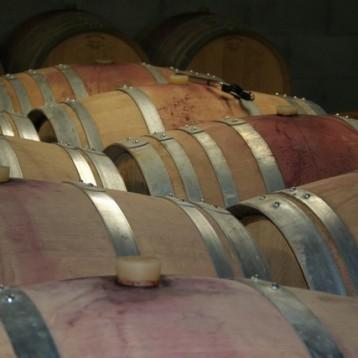 Barriles llenos de vino tinto