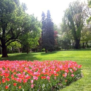 Jardín contiguo a la Rathausplatz